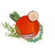 Namų kvapas Carbaline Spice 50ml