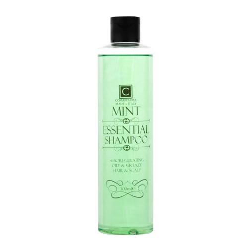 Plaukų šampūnas riebiems plaukams ESSENTIAL 300ml